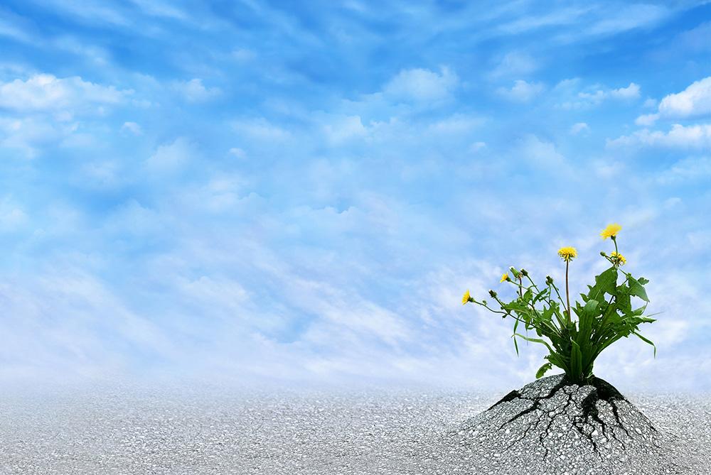 Le sens de l'effort spirituel