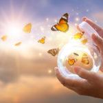 Acceptation et pleine conscience